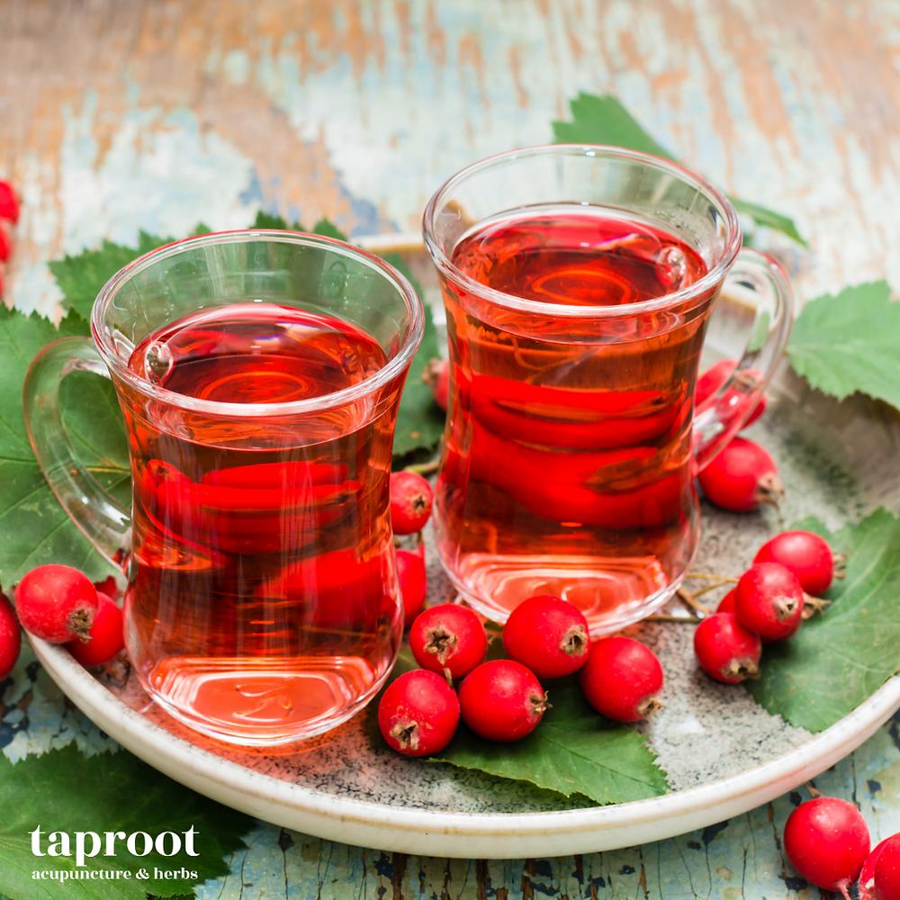 hawthorne berry tea