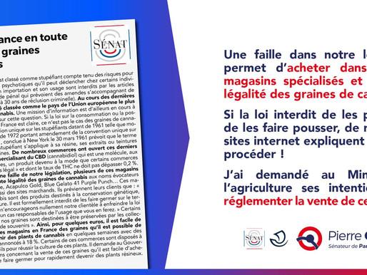 Achat en France en toute légalité des graines de cannabis