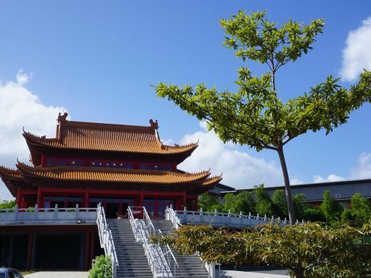 Plantation « Bois de Wu Wei »