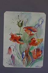 Aquarell - Blumen