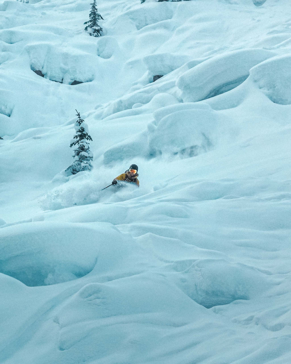 Fischer ski pillows