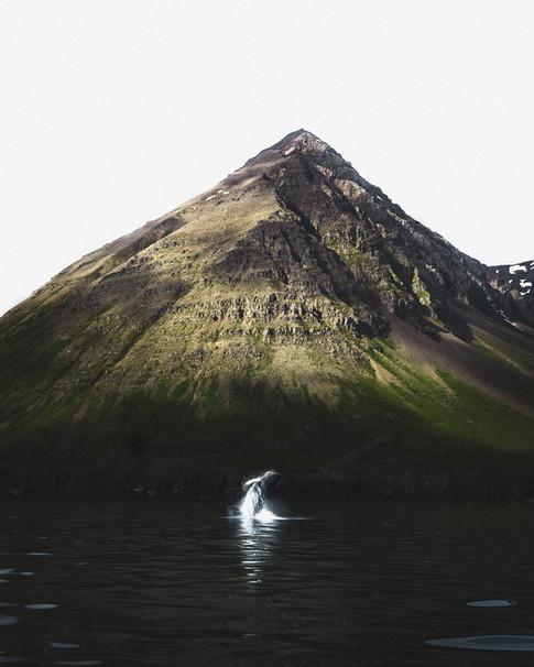 Arctic Web-020.jpg