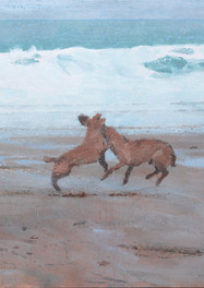 Leaping dogs, Pendower beach..