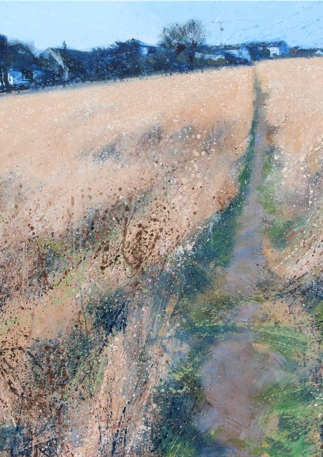 Winter field, Portscatho