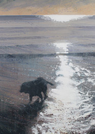 Dog on a beach, early morning.