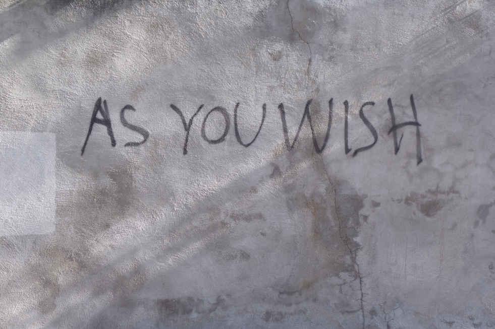 Brisbee - As you wish