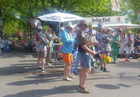 Dutch Musicians at Tulip Festival
