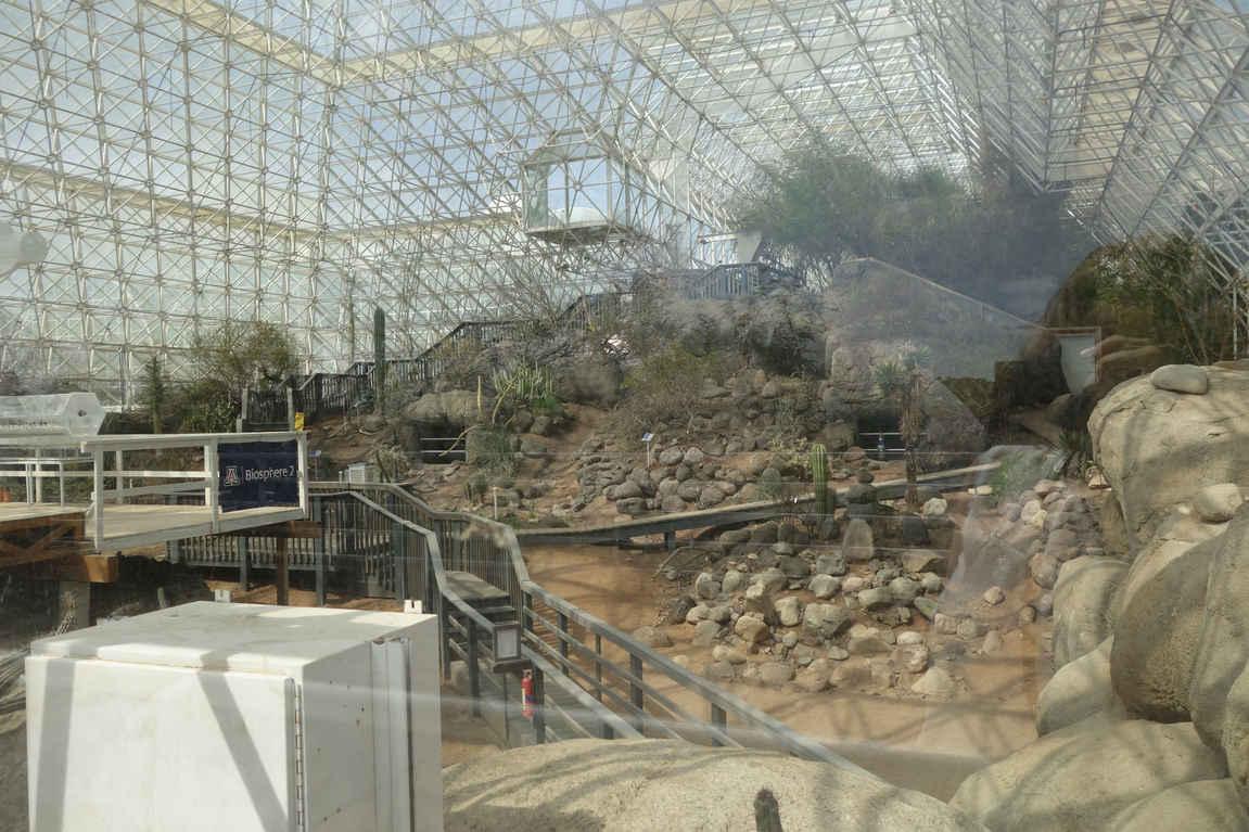 The Savannah in Biosphere