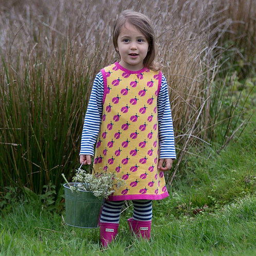 Kite Ladybird Dress