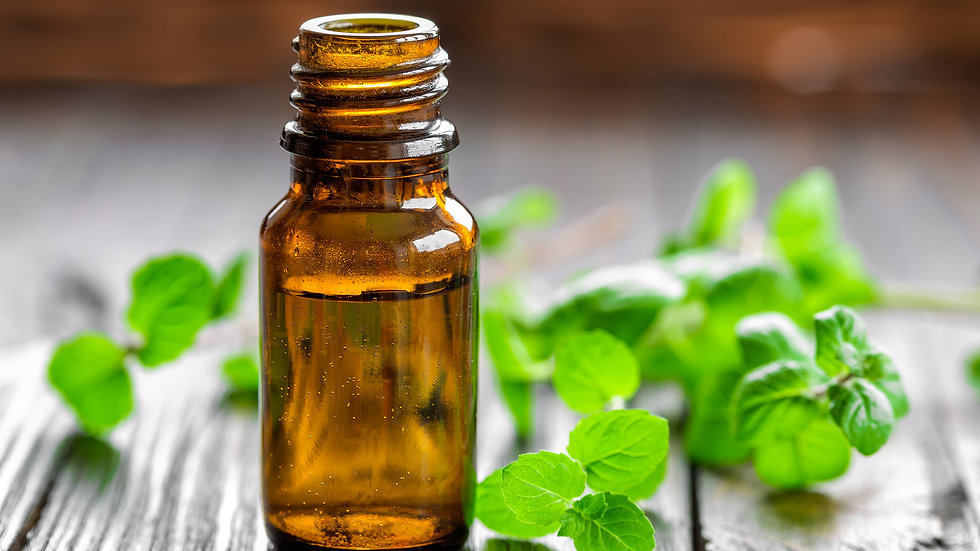 Peppermint Essential Oil - Brisbane Australia