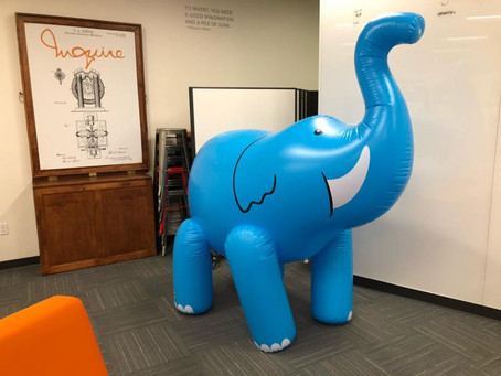 AN ELEPHANT IN A ROOM