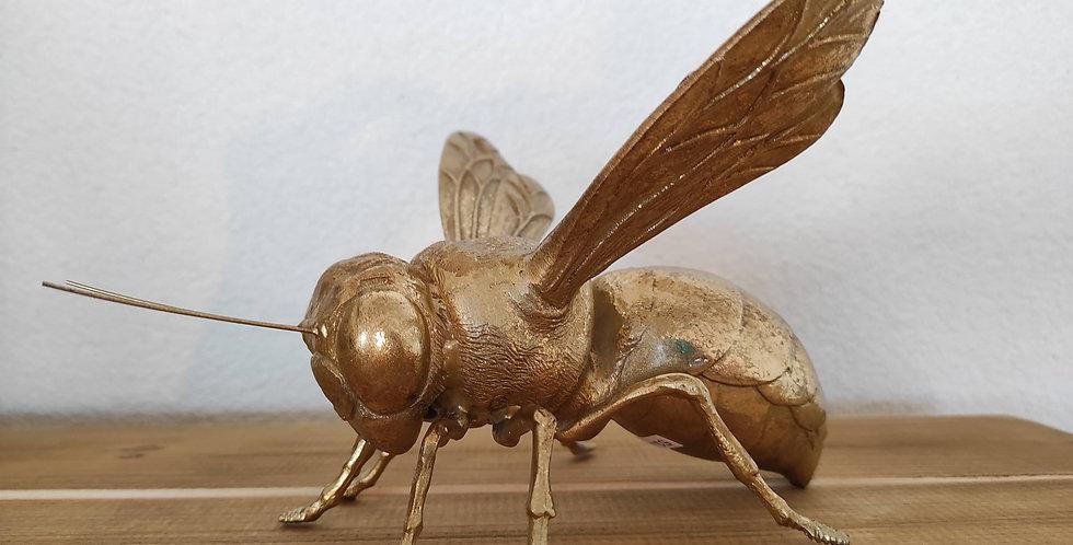 Insekt Biene