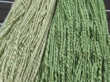 Grün wie zarte Frühlingsknospen