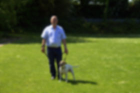 Adult dog training at Woolmer Green
