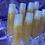 Thumbnail: champagne Tati