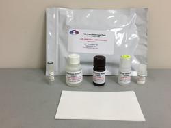PEG Immunogenicity ELISA Kit