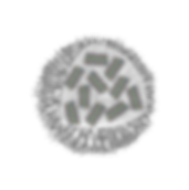 mRNA_Nanoparticle_May2019.png
