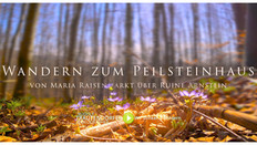 Frühling am Peilsteinhaus