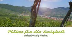 Plätze für die Ewigkeit   Welterbesteig Wachau