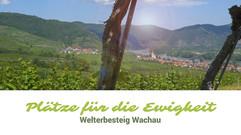 Plätze für die Ewigkeit | Welterbesteig Wachau