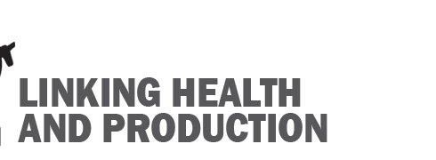 Membership Spotlight: SUIDAE Health & Production