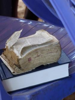 New Bibles