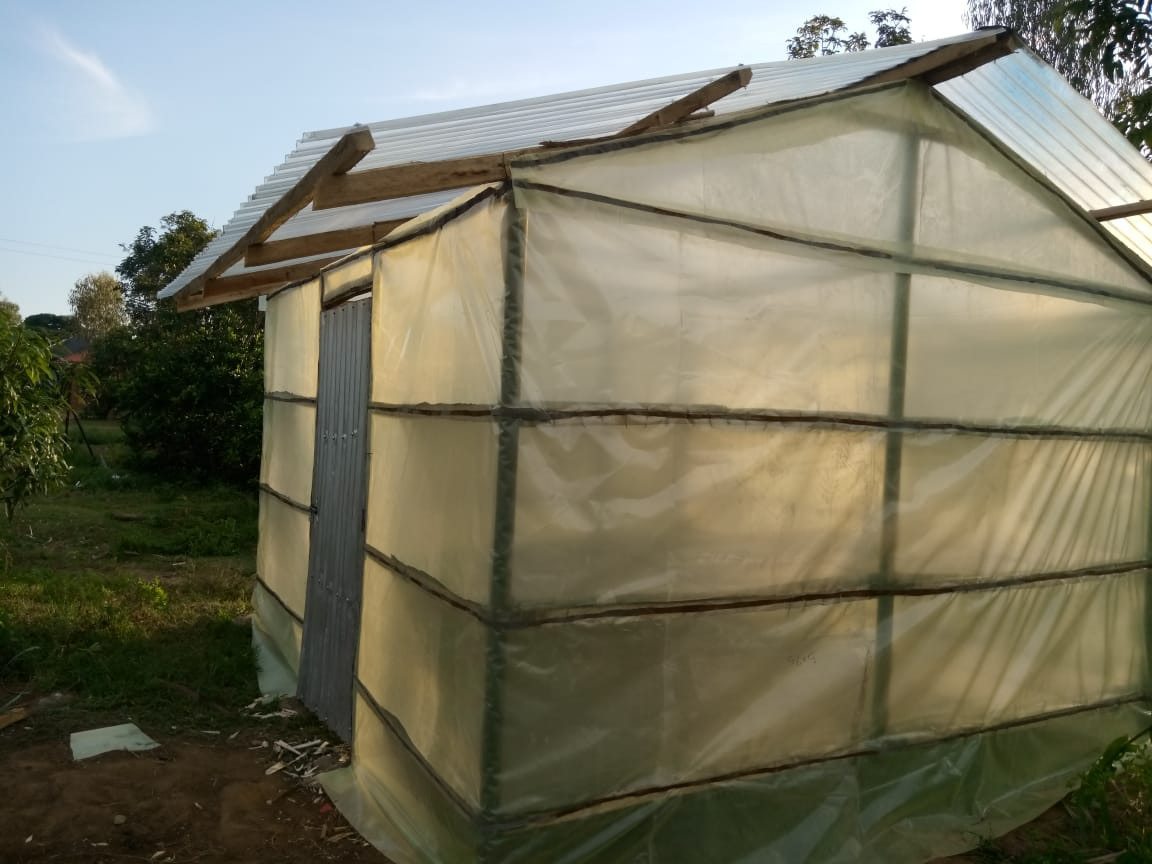 Yogo - solar dryer - outside completed