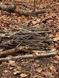 DAY 2 - wood 2.jpeg
