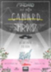 CANARD-NAZCA.jpg