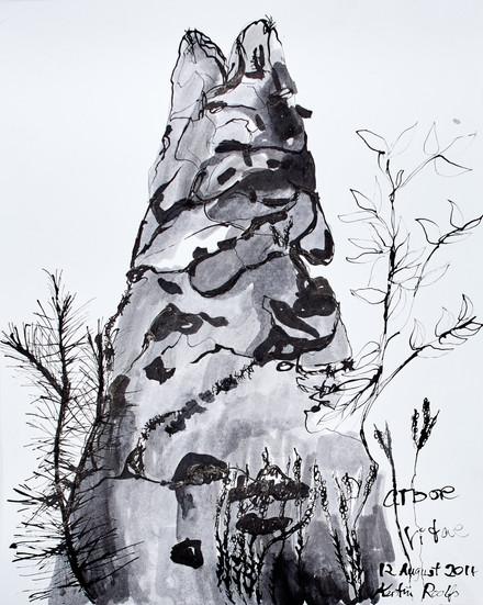 Arbore Vitae