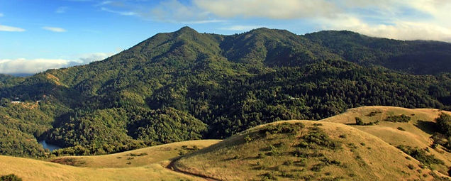 Mt Tam 2.jpg