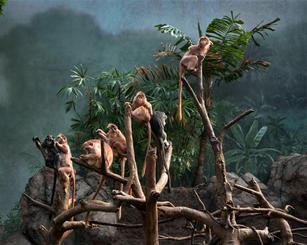 wildlife dioramas Uno