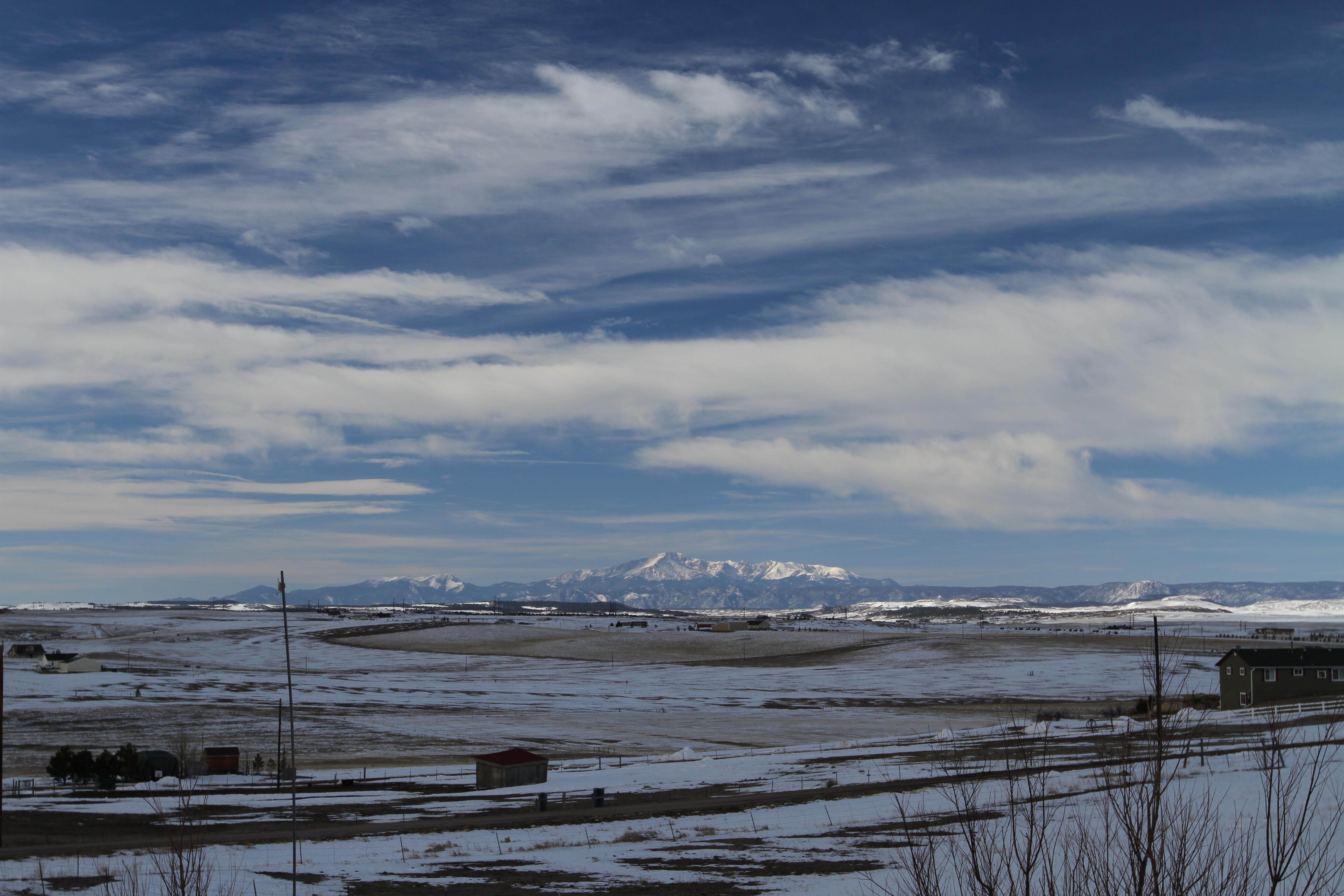KC Ranch, Golden Retriever, Labrador and Goldendoodle