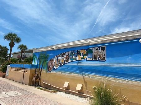 Dunedin & Safety Harbor | Popular Tampa Bay Neighborhoods