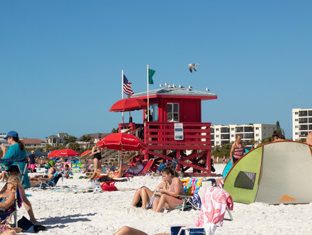 Moving to Florida in 2020? What You Need to Know
