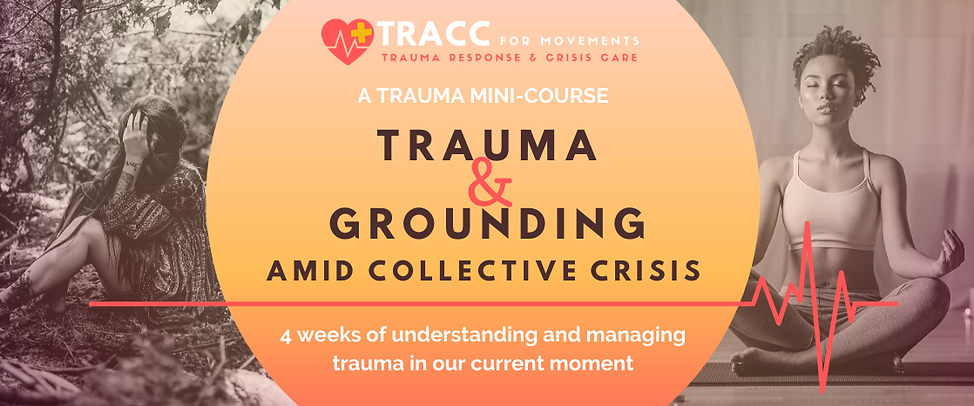Trauma Mini Course Header Image.png