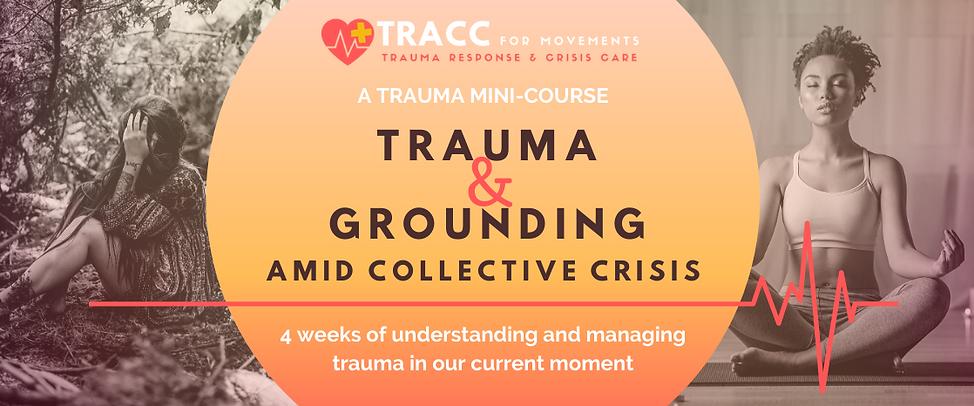Trauma Mini Course Header Image.png