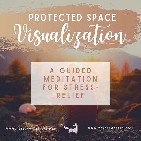 protected space visualization meme (1).j