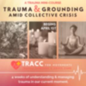 Trauma Mini Course Insta Post (3).png