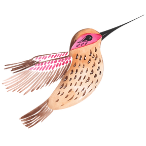 hummingbird logo.png