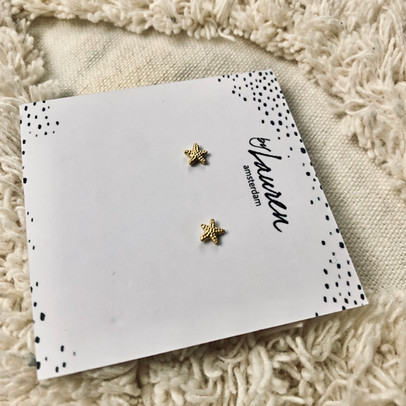 6. starfish mini G 7.jpg