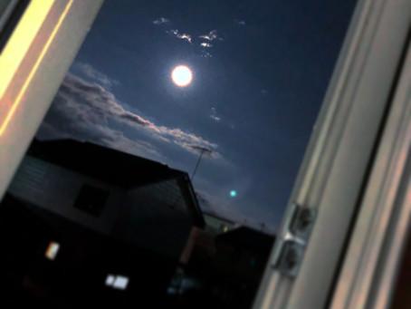 月が綺麗ですね。。。
