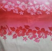 TI-11 Hibiscus rose