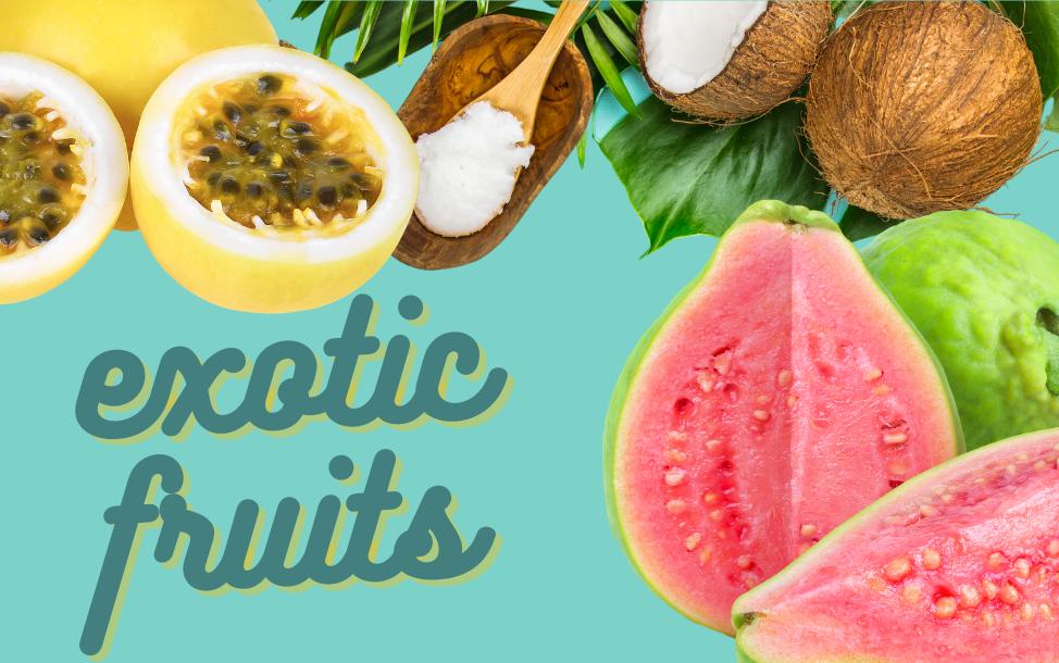 exotic fruit banner.png