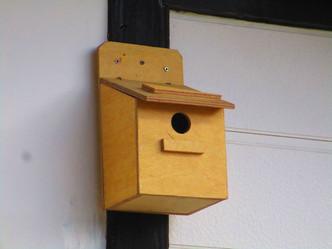 珈琲の館に小鳥の新居を!