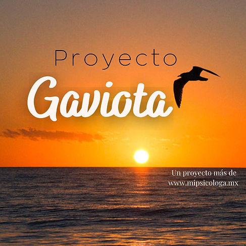 Proyecto Gaviota.jpeg