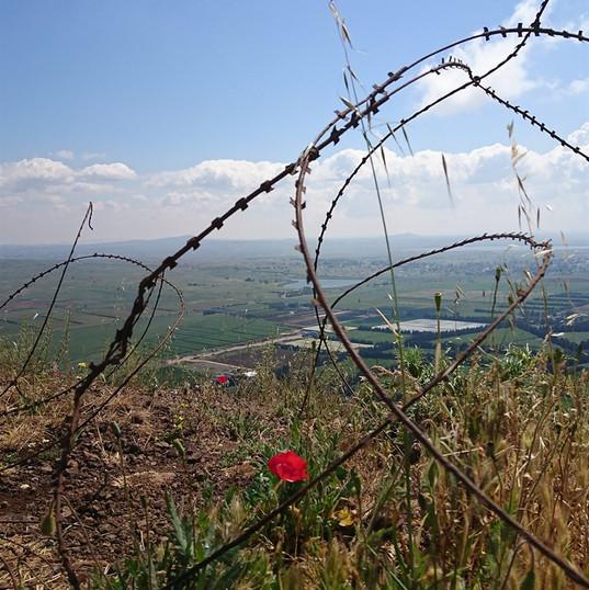 Mount Ben Tal