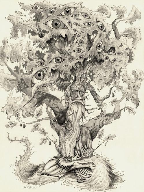 Tree Man Poster Print