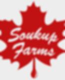 soukup_edited.png