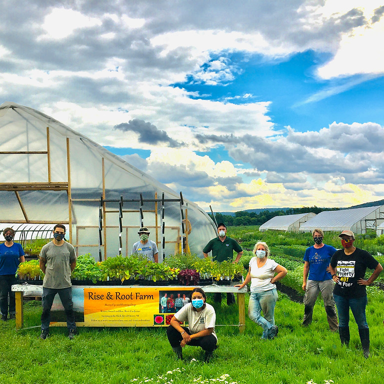 Helping Hands at Rise & Root Farm